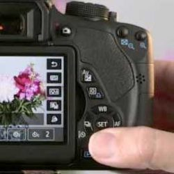 Canon EOS Rebel T5i Live View display